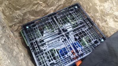 Flašky vo fatrafole, schované na horšie časi v trativode :D