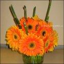 Kvetinky...torty... - Obrázok č. 64