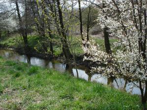 sem-tam sa nam prechadza pri dome zajac, bažant alebo preleti nad potokom volavka..hotovy biotop... :)