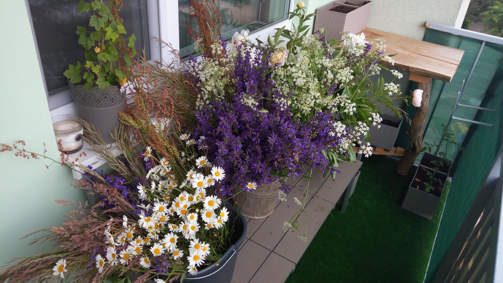 Milované kvietky 😊 Urobili sme si krásny deň a natrhali sme na lúke kvety na výzdobu 😊 - Obrázok č. 1