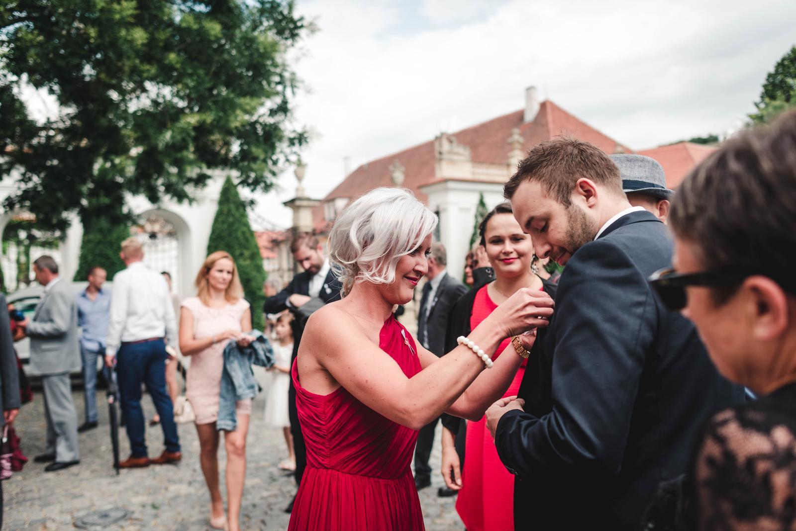 Česko-francouzská svatební párty - Obrázek č. 1
