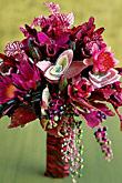 Kvety, kvietky, kvetinky... - Obrázok č. 29