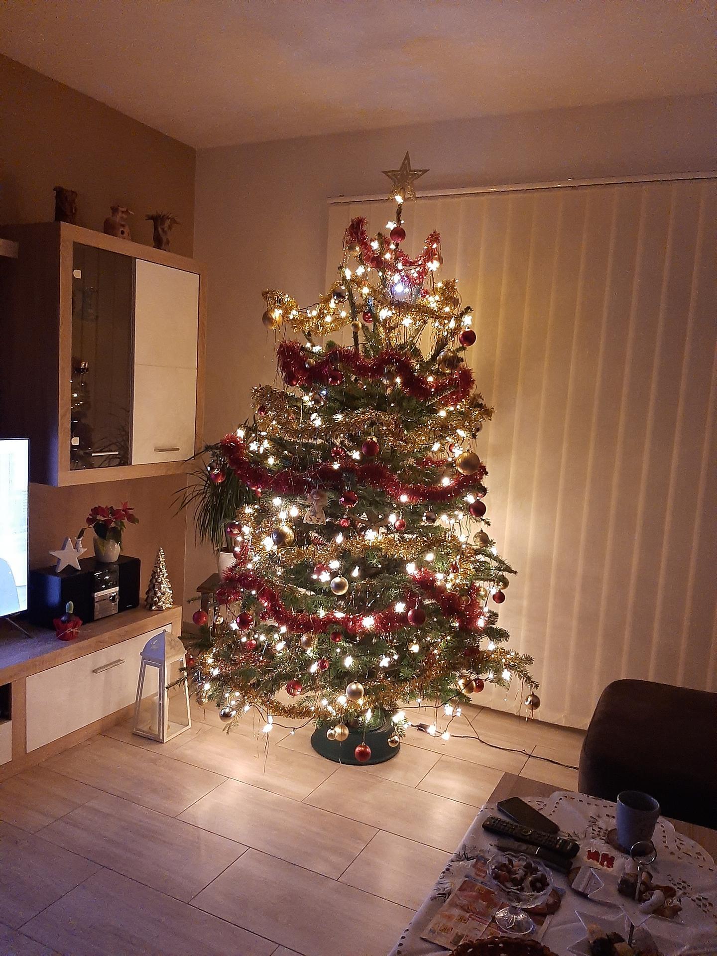 Vánoční čas je už i u nás-stromeček je na svym místě,tak už může přijít ježíšek🎄🎁😉 - Obrázek č. 1