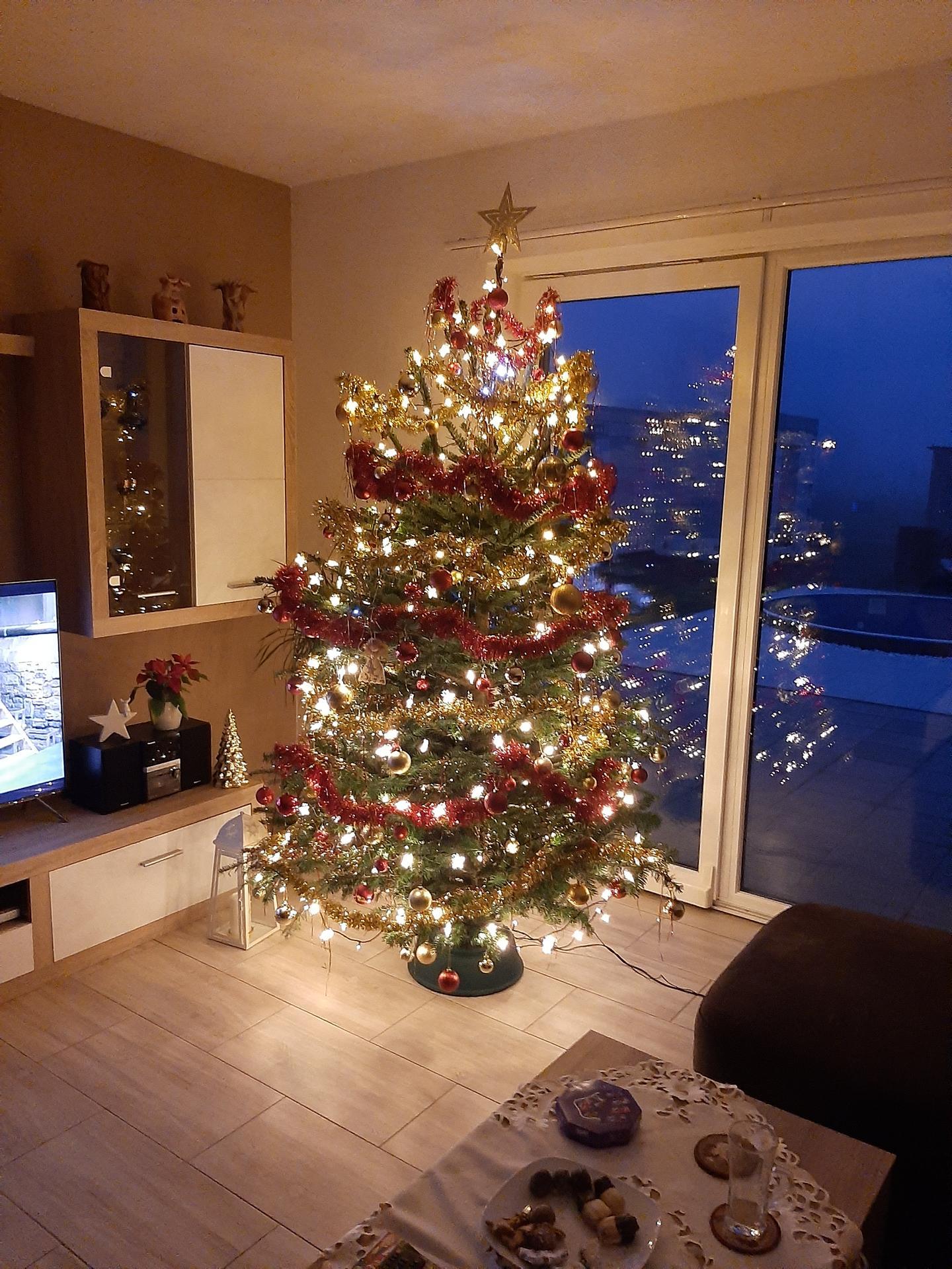 Vánoční čas je už i u nás-stromeček je na svym místě,tak už může přijít ježíšek🎄🎁😉 - Obrázek č. 2