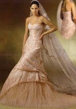 Krásné šaty, mně by stačil ten závoj,jen ho sehnat