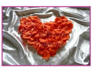 Lupienky oranžové :-)