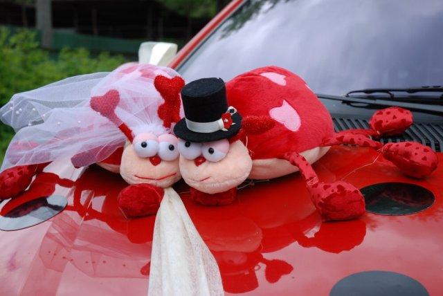 Vyzdoby svadobných  áut - mila ozdoba na svadobnom aute