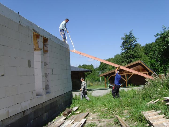 Náš bungalov Archikom1 - A hop pomurnice hore