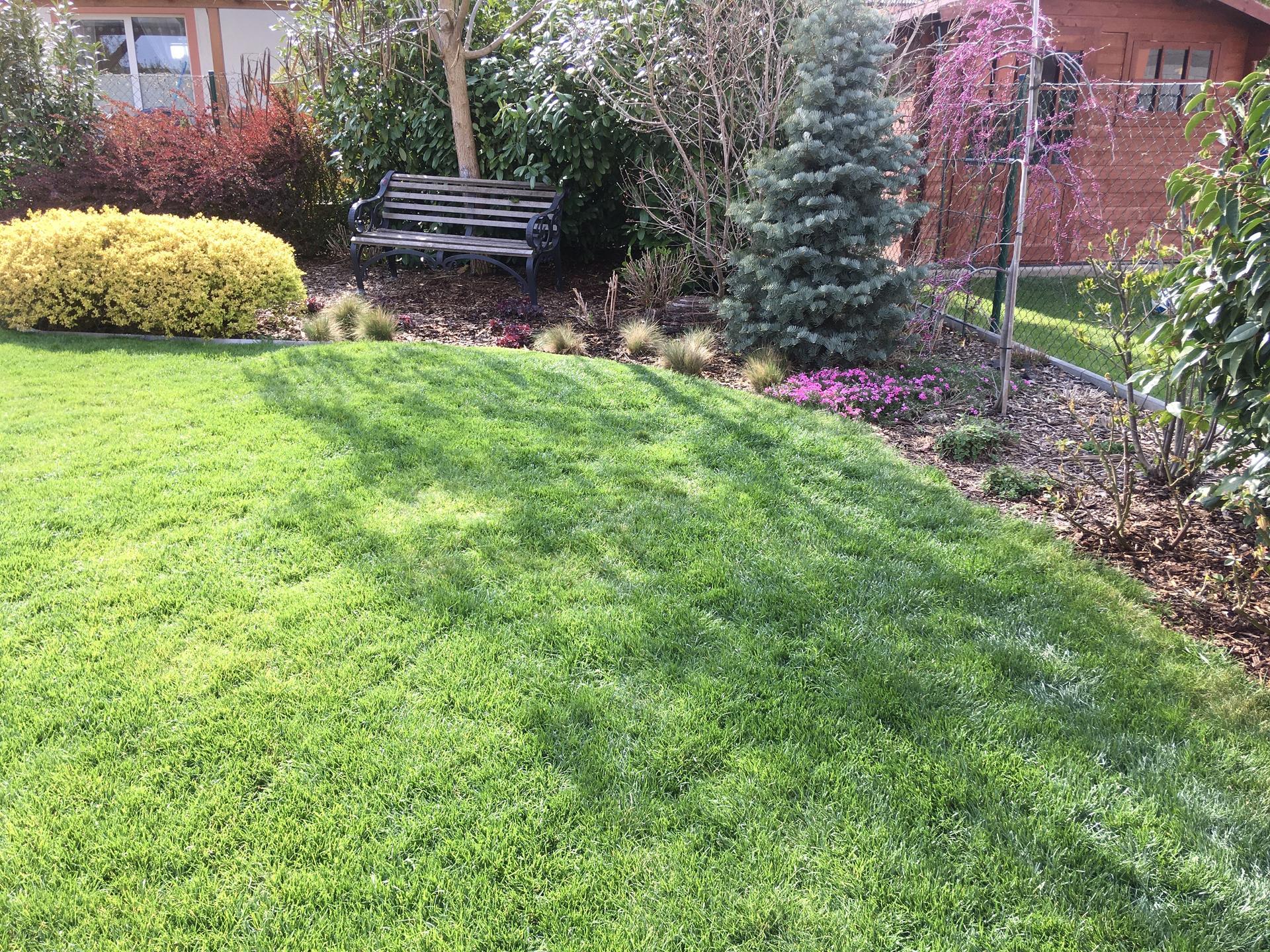 Zahrada 2020 - trava posekana.. uz se to docela zelena 😍!