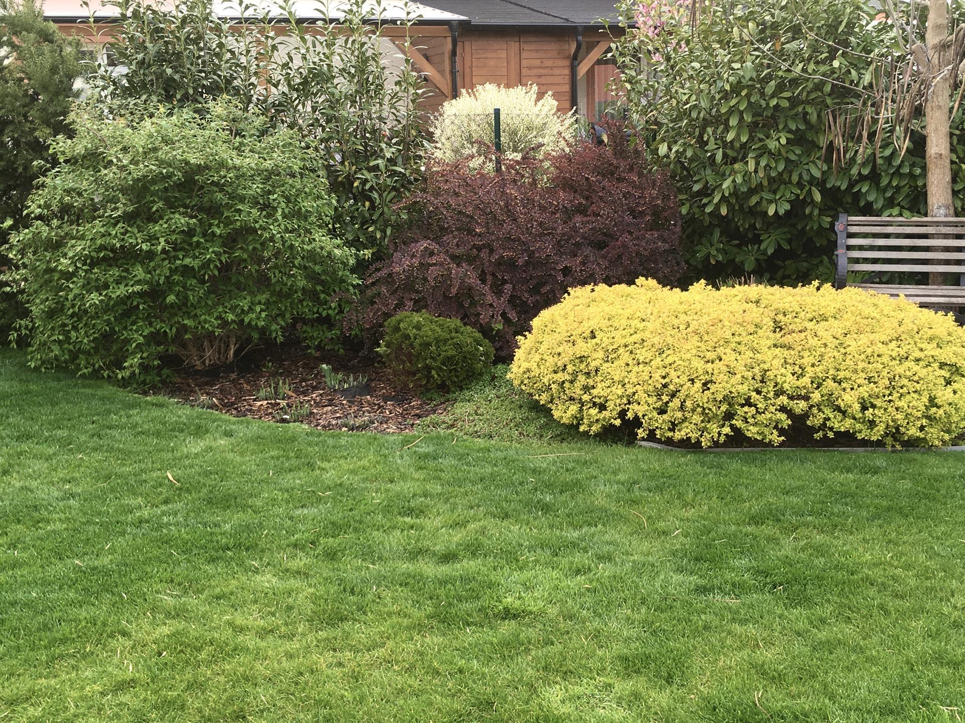 Zahrada 2020 - Ladime zahradu i se sousedy a vytvarime harmonicky celek nedbaje hranic pozemku 😃
