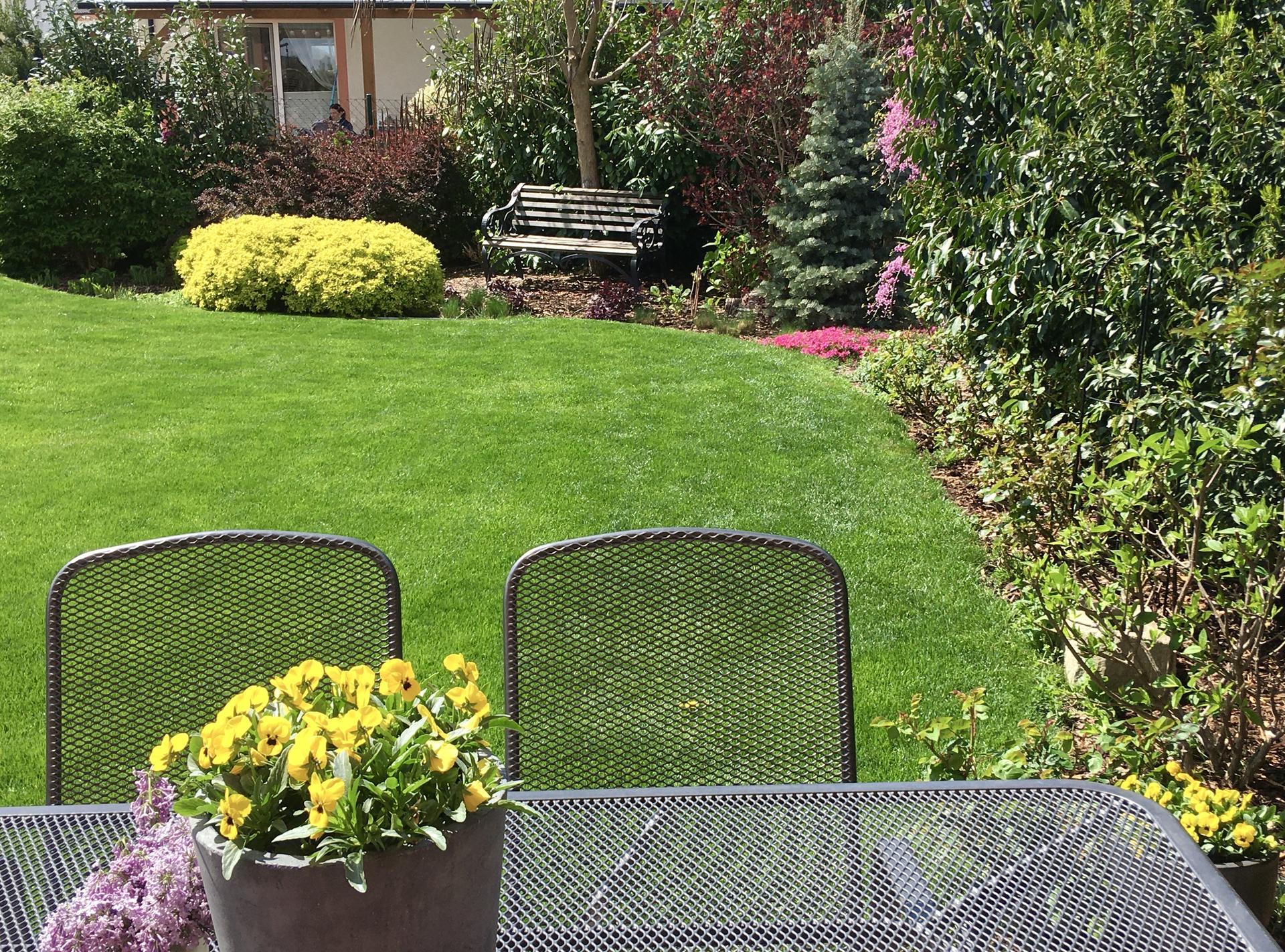 Zahrada 2020 - vyhled od stolu na terase