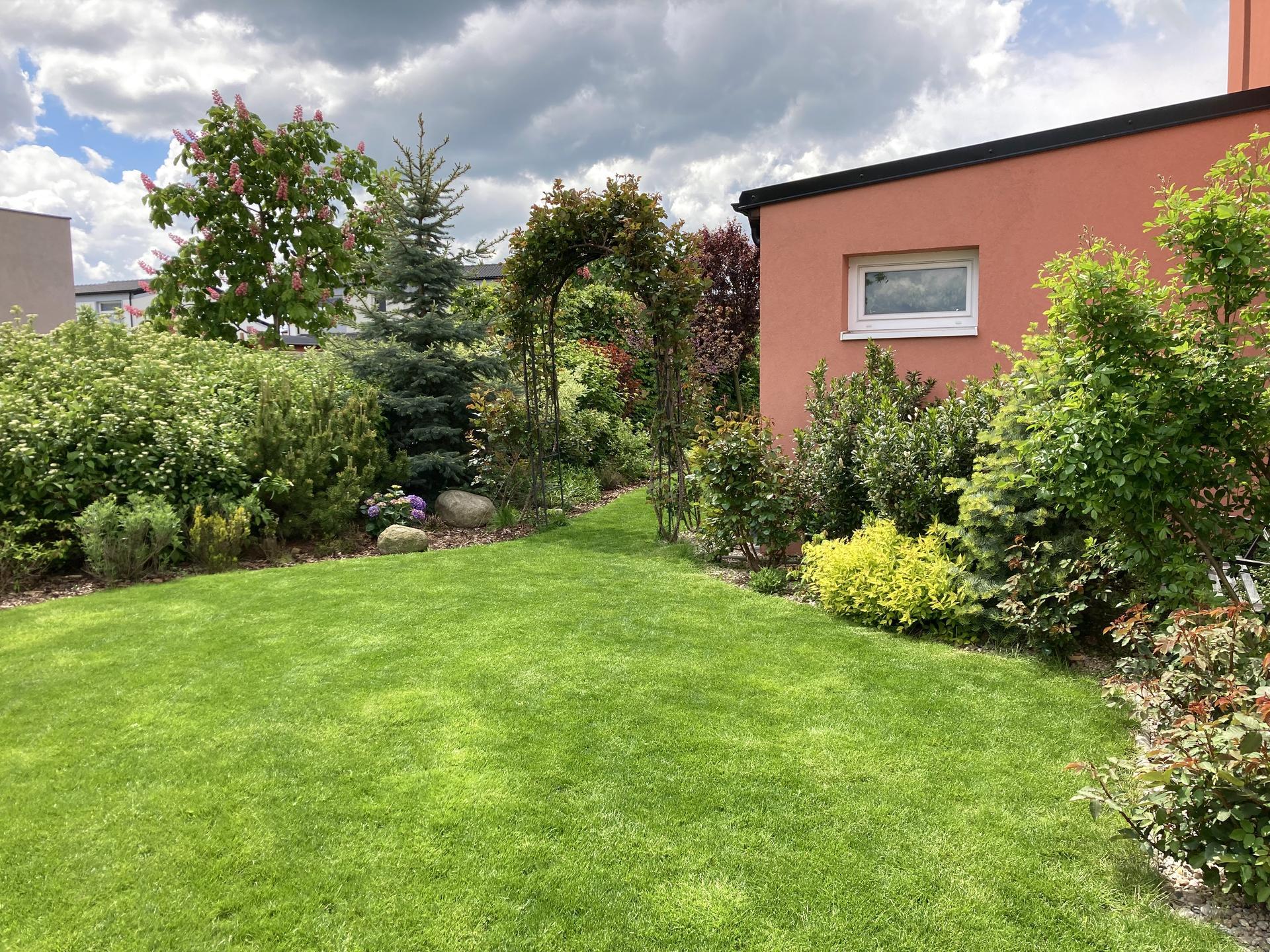 Zahrada 2021 - cerstve posekano😊