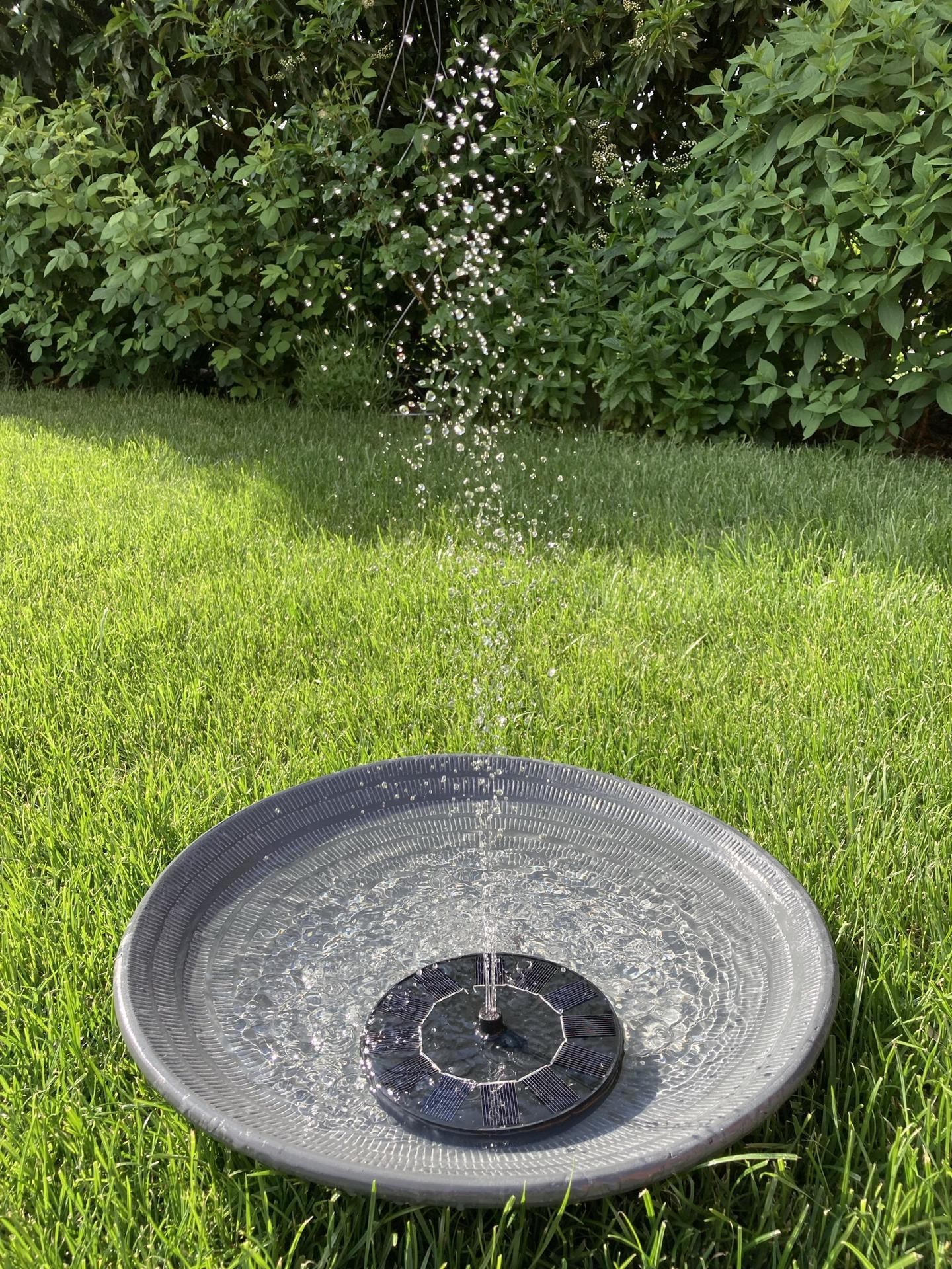 Zahrada 2021 - nova solarni fontanka, pitko pro kocky, jezky a ptaky... jen ptrebuje vetsi misku, 40 cm je malo...