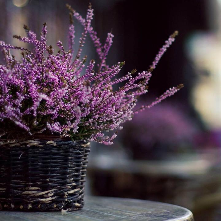 Aj jeseň má svoje čaro -inšpirácie :) - Obrázok č. 98