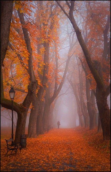 Aj jeseň má svoje čaro -inšpirácie :) - Obrázok č. 6