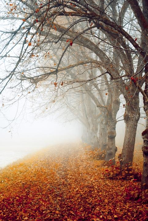 Aj jeseň má svoje čaro -inšpirácie :) - Obrázok č. 7