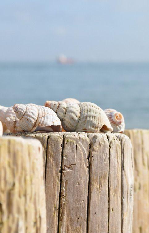 Už cítit vônu leta -Sea styl -inšpirácie :) - Obrázok č. 502