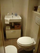 a este wc, nad umyvadlo pojde zrkadlo a skrinka zavesit..hm len kedy....?  :-)))))