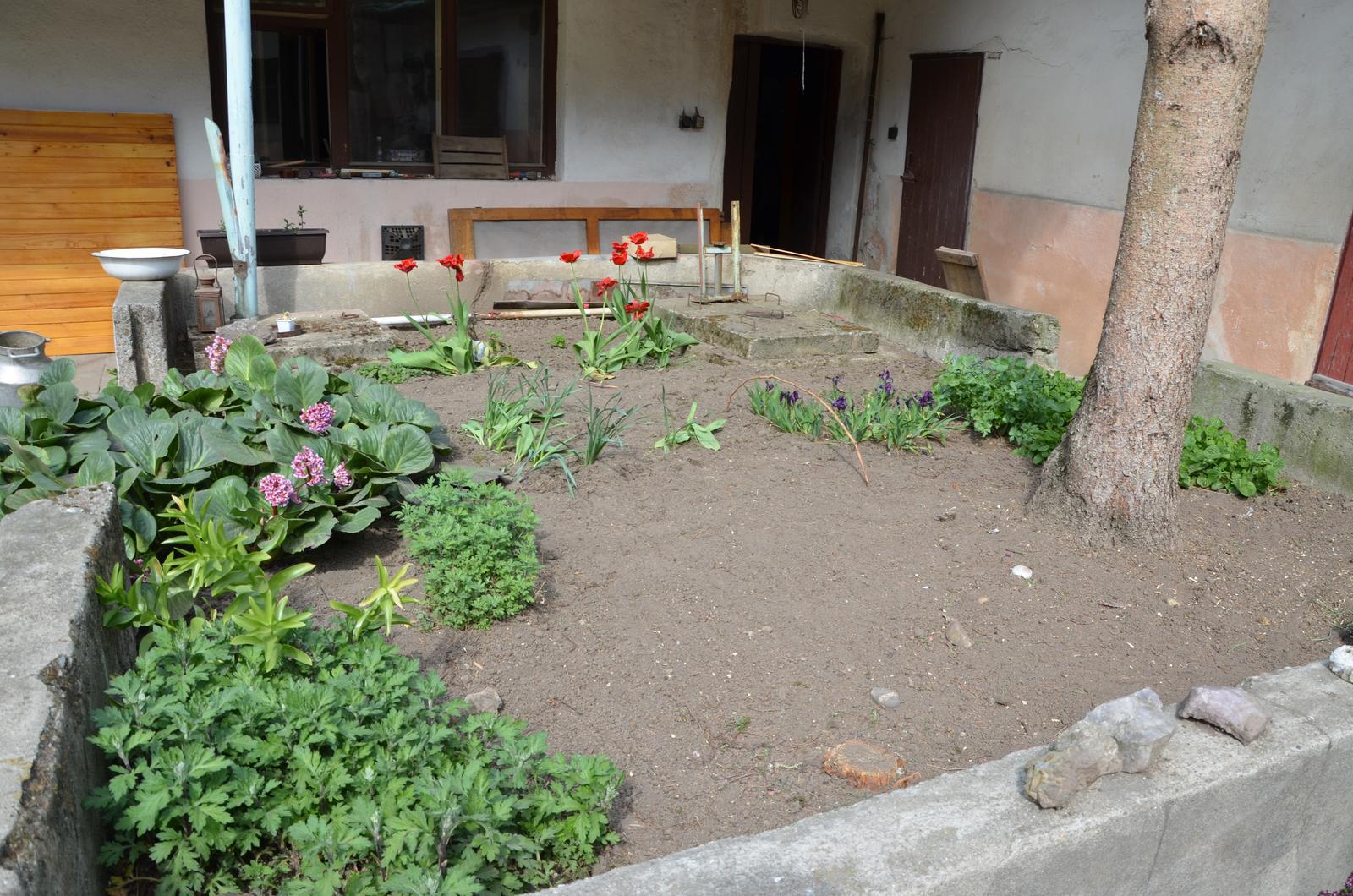 Vysněná zahrada... - bylinky bych asi chtela po obvodu, aby se k nim dalo snadno dostat