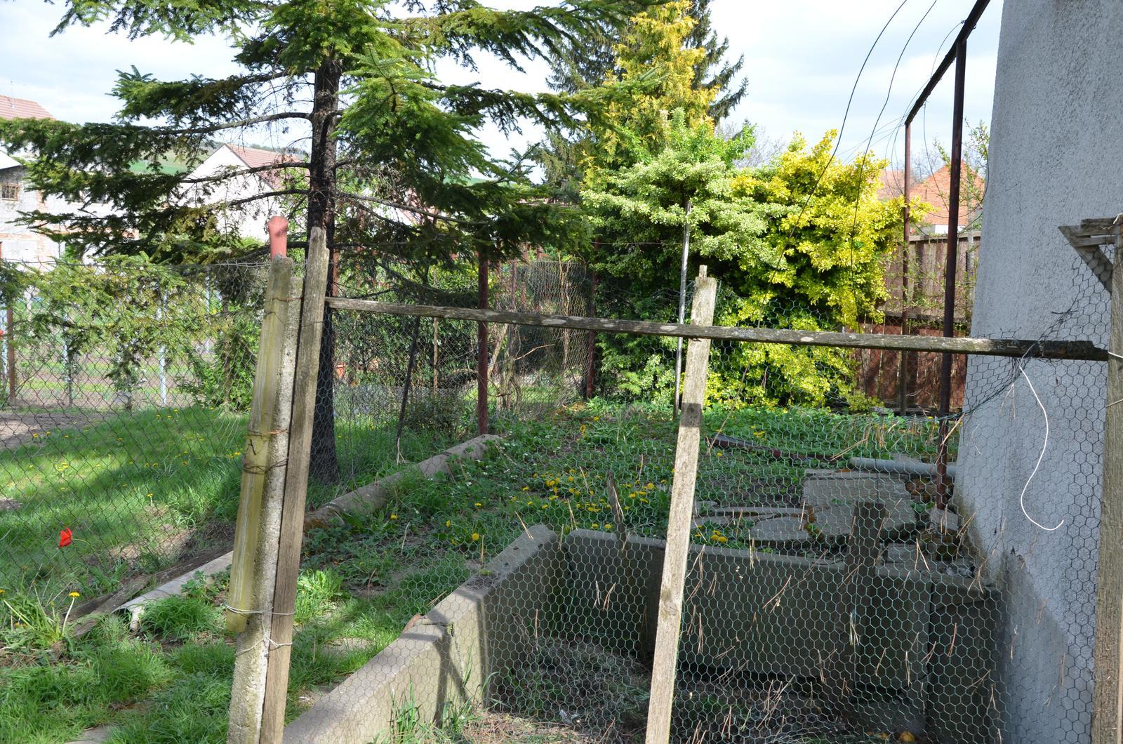 Vysněná zahrada... - kolem sklepu doprava....hnojník (asi zasypeme? stejně nekompostuje, jenom schne, pořídíme kompost na konec pozemku)