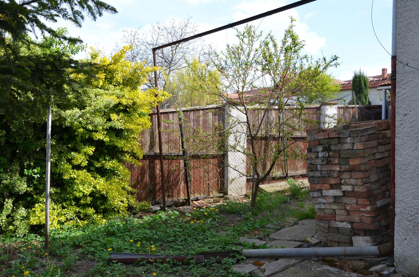 Vysněná zahrada... - dále jahodami kolem sklepa....broskvoň (a zase to okrasný)