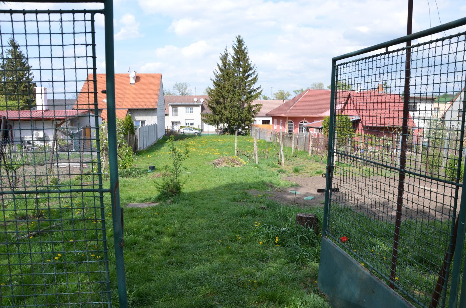 Vysněná zahrada... - duben 2015