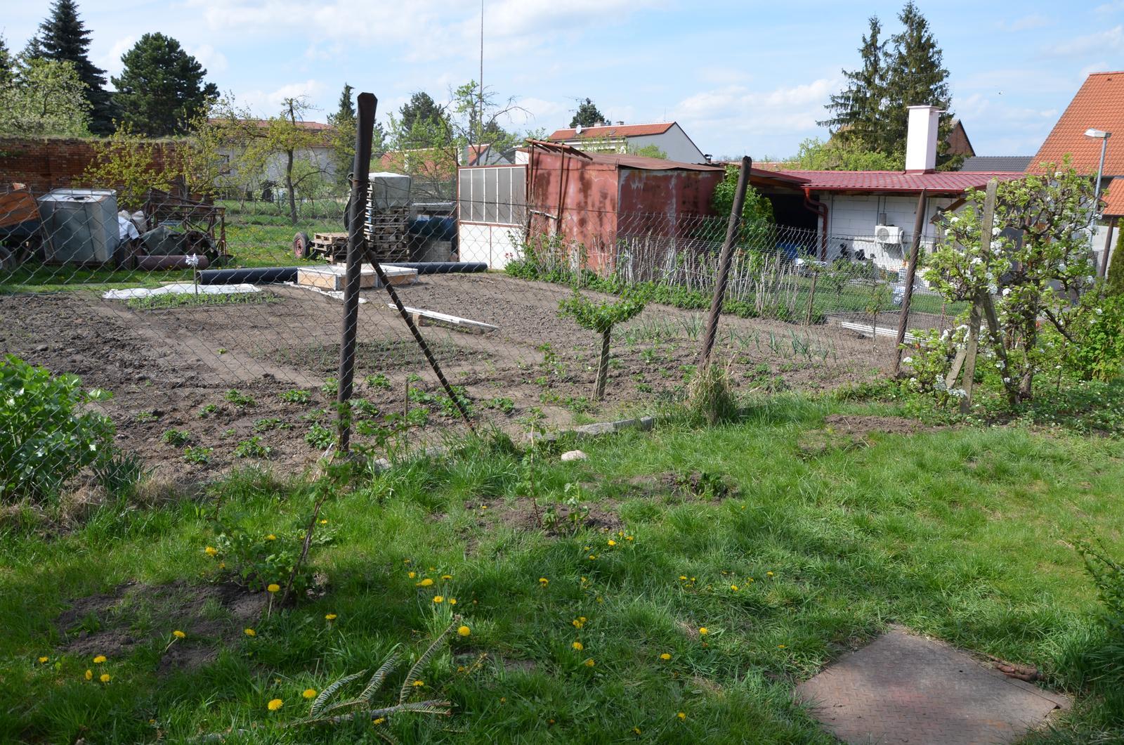 Vysněná zahrada... - když se pozorně zadíváte, uvidíte zasazené maliny, to už je naše práce