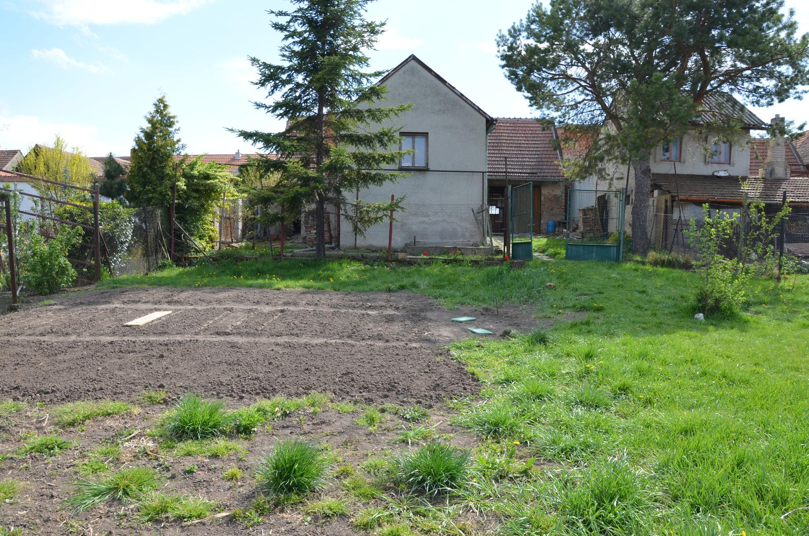 Vysněná zahrada... - naše latifundie :-D ještě se jeden záhon vleze