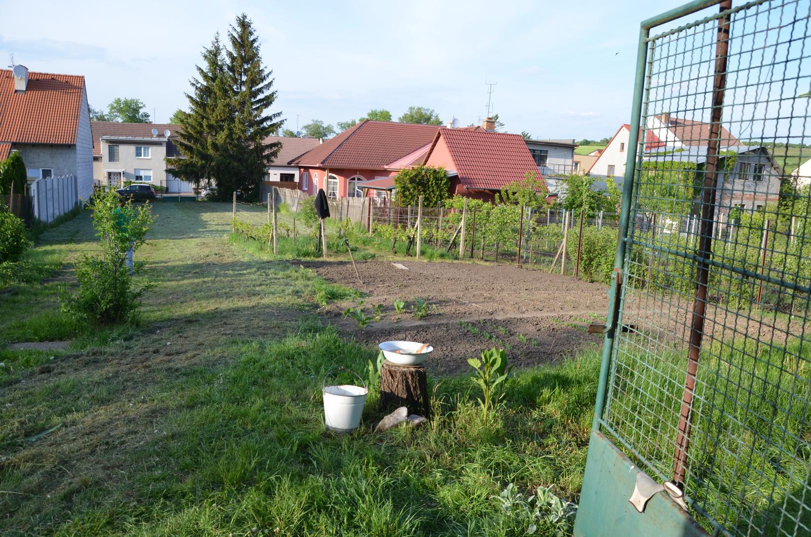 Vysněná zahrada... - Vytváříme genia loci naší zahrady :-D Pítko/koupátko, do kýble asi něco zasadím....