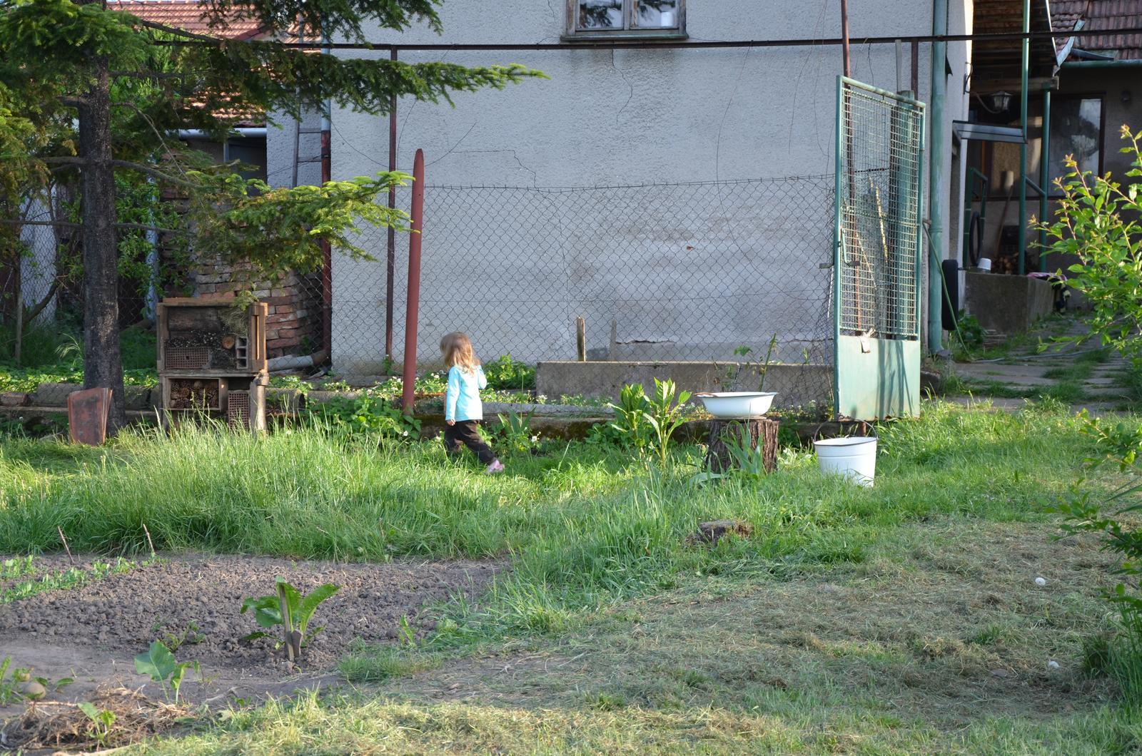 Vysněná zahrada... - Obrázek č. 46