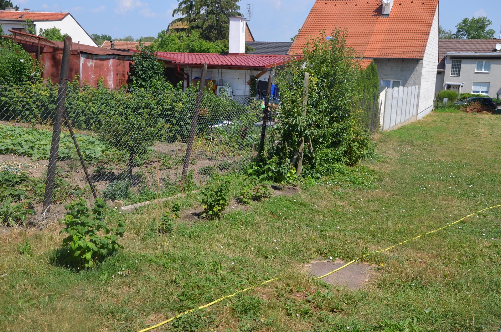 Vysněná zahrada... - zasazené maliny poskočily :-)