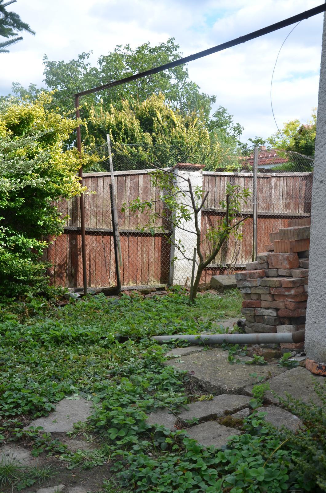Vysněná zahrada... - Okudlaná broskvička