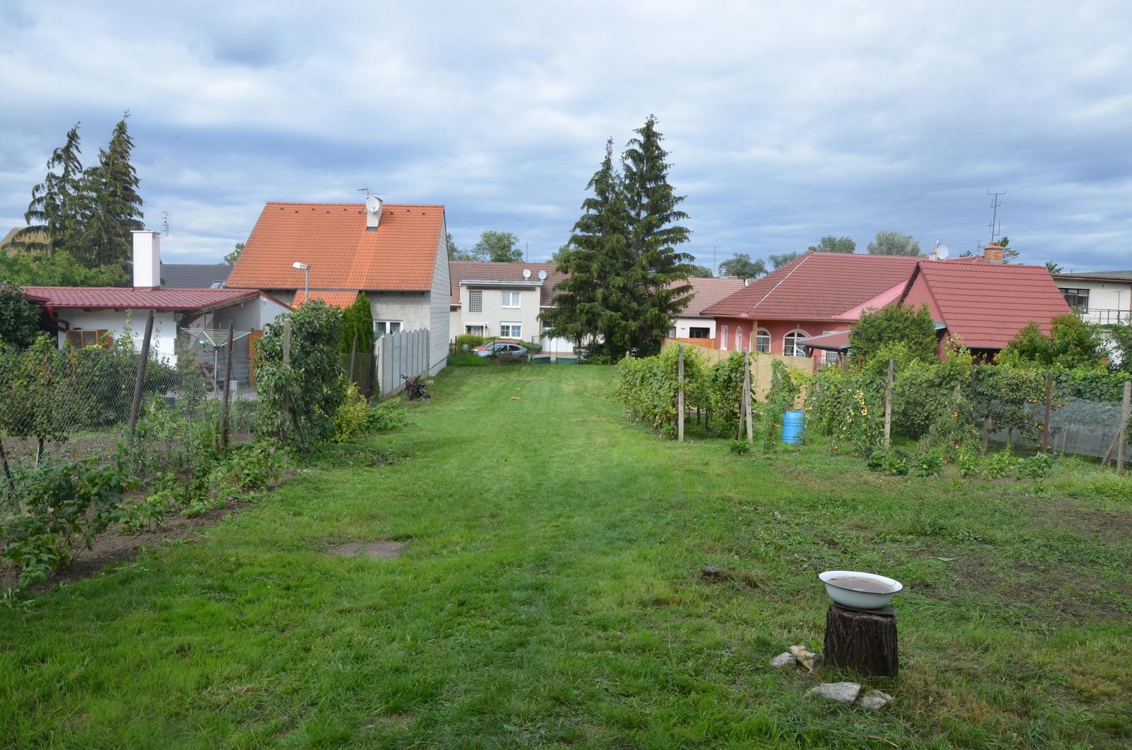 Vysněná zahrada... - Zahrada v září 2015, vratič a líčí je pryč, maliny nalevo povyrostly...