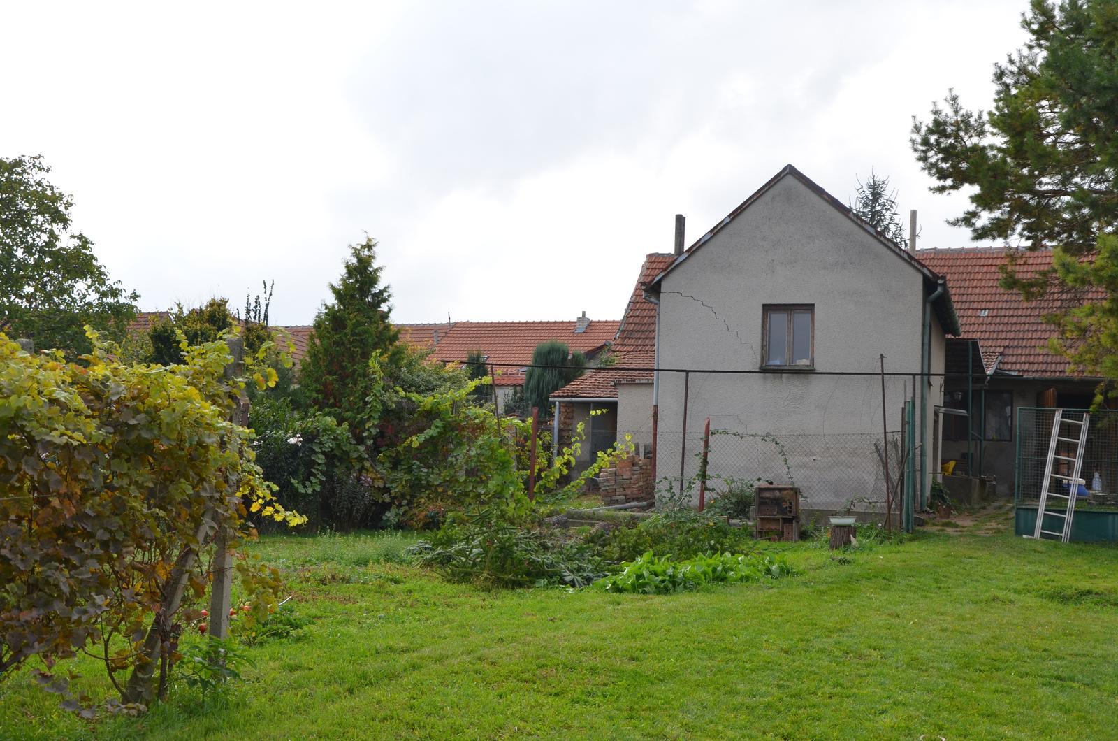 Vysněná zahrada... - Obrázek č. 96