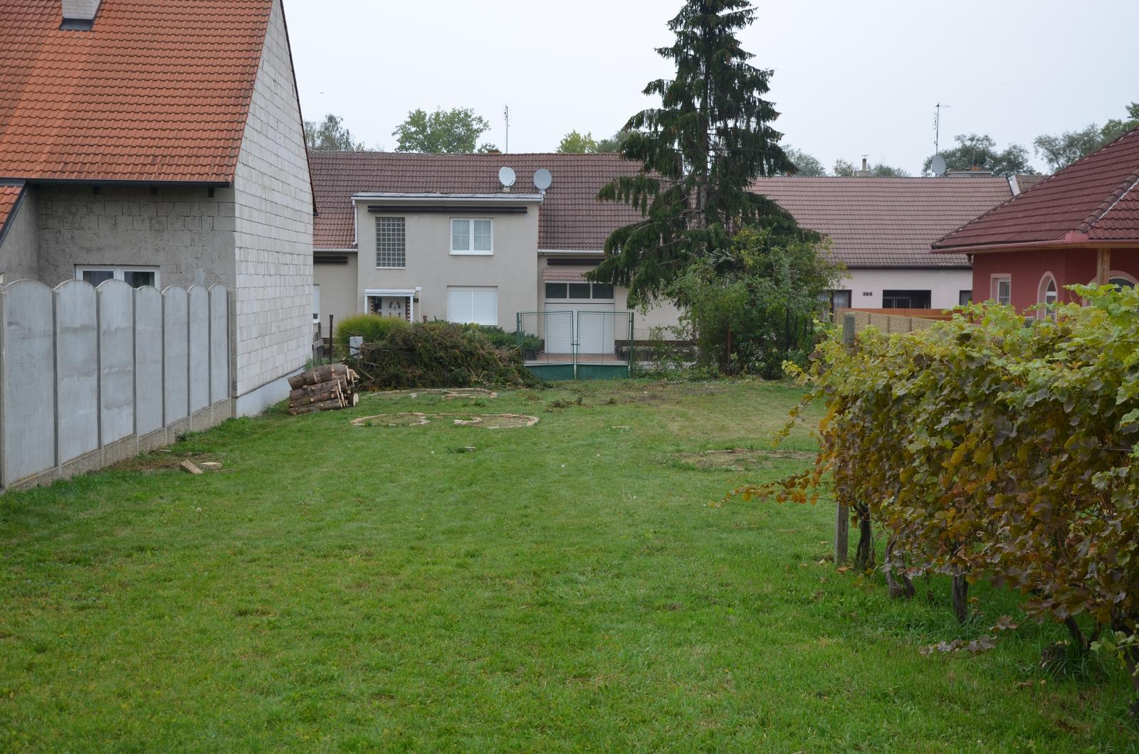 Vysněná zahrada... - Ze tří zbyl jeden, za plotem, a ten o pár dní později složili sousedi.