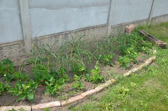 puklý pražec je nachystaný na zasazení rozrazilu a nějaké popínavky, vedle pak bude zahradní houpačka:-)