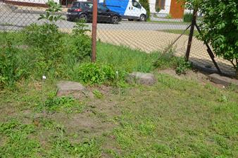 Vzadu u plotu by měl vzniknout živý plot vesměs z původních keřů....