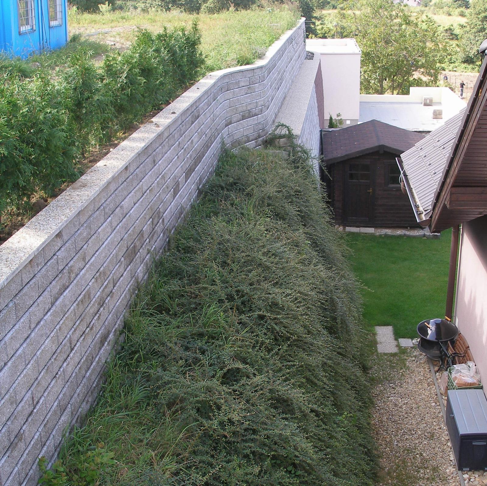 kosto13 - Zelený strmý svah po plnom pokrytí vegetáciou. Hore oporný múr z malých tvárnic, Bratislava - Záhorská Bystrica 2009