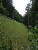 Vystužený strmý svah 45°s protieróznou ochranou z trojrozmernej polyetylénovej georohože, Kolárovice 2006.