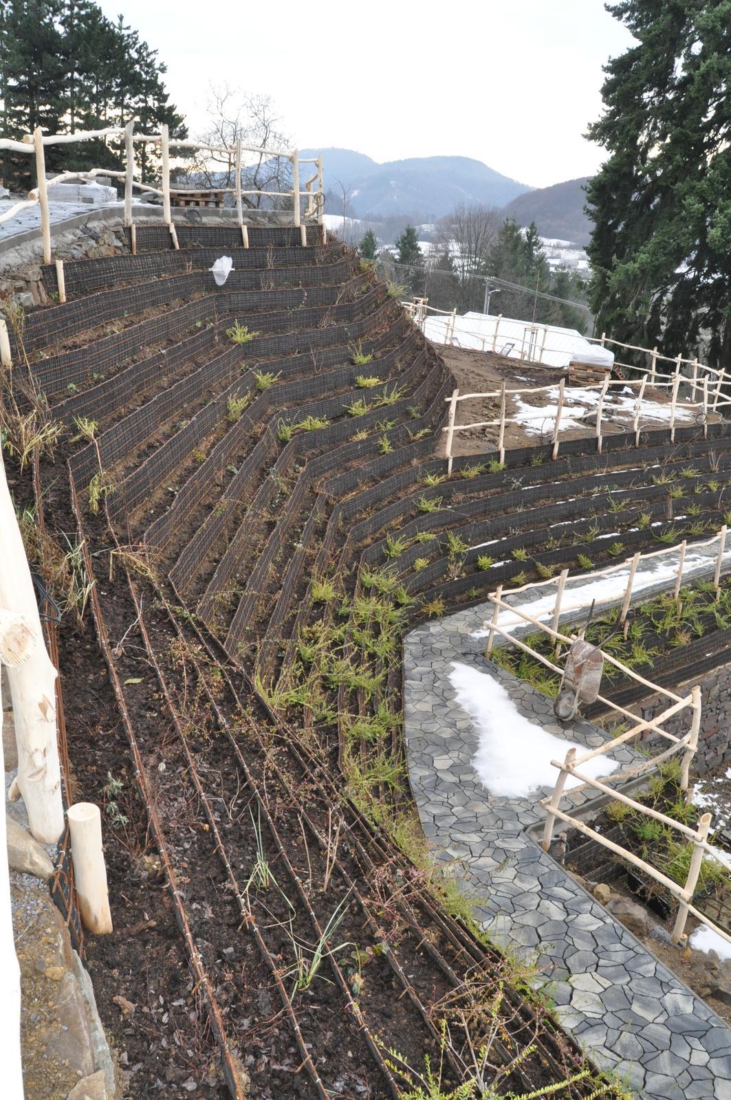 12. GreenSteel - vegetačný strmý svah ( doplnené 12.6.2020 ) - 2019_12 Pohľad na rampu