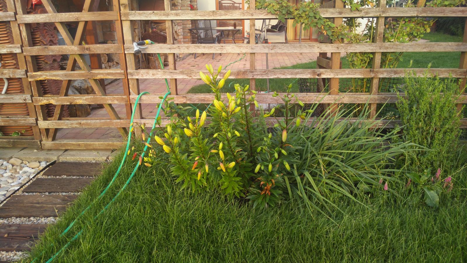 Foto priehľadného plotu, olejové... - Obrázok č. 3