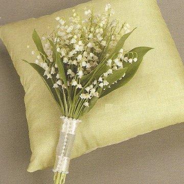 Marek a Maťka - moje oblubene kvetinky