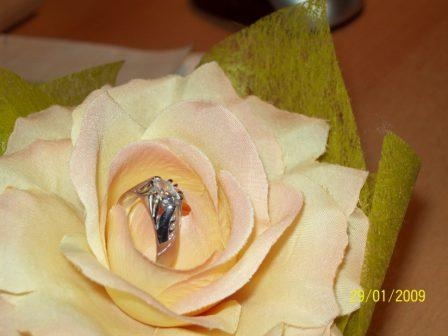 Môj snubný prstienok:)