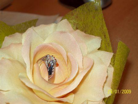 Jarka & Luky - môj snubný prstienok:)