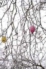 Zima vs jar. Trochu nadrzam jari. :D