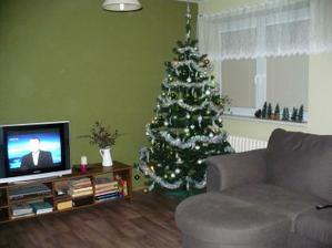 Vánoční obyvák 2011