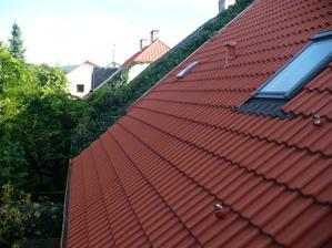 břečťan ze sousedové střechy se pomalu sune k nám ):