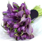 Fialove tulipany s freziou do kytice