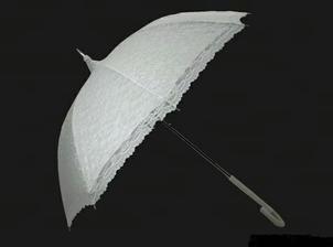Dáždnik ktorý my robil spoločnosť