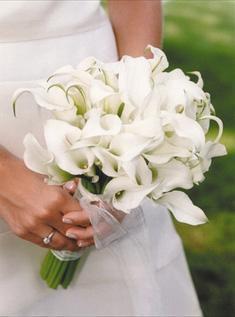 Kvety - Obrázok č. 1